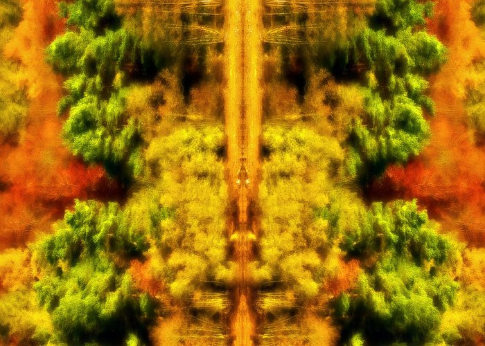 Autumn Greeting Card featuring the photograph Fall Abstract by Meirion Matthias