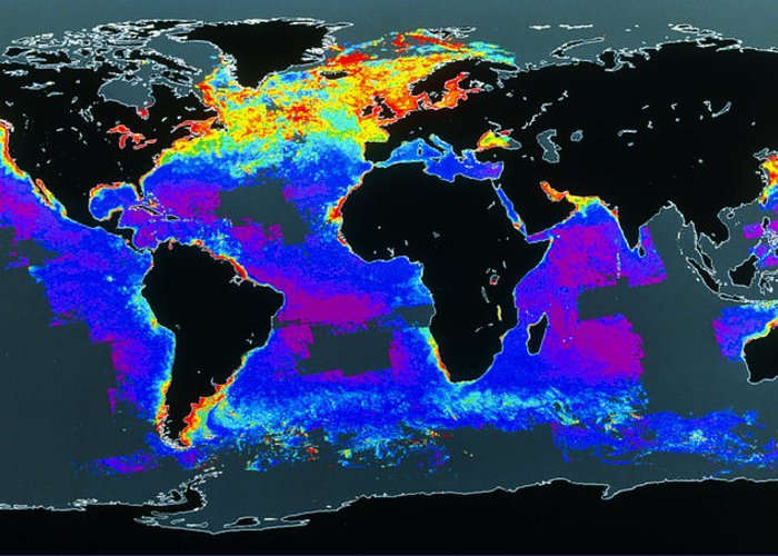 Phytoplankton Distribution Greeting Card featuring the photograph False-col Satellite Image Of World's Oceans by Dr Gene Feldman, Nasa Gsfc