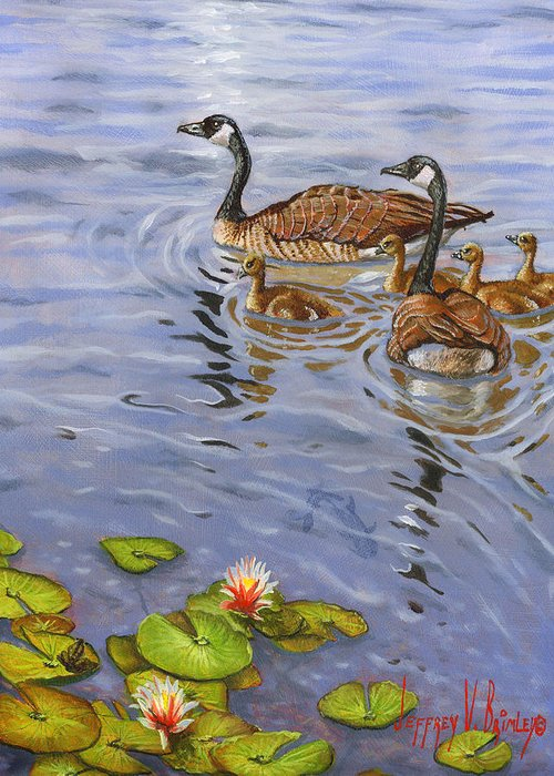 Canadian Geese Greeting Card featuring the painting Family Outing by Jeff Brimley