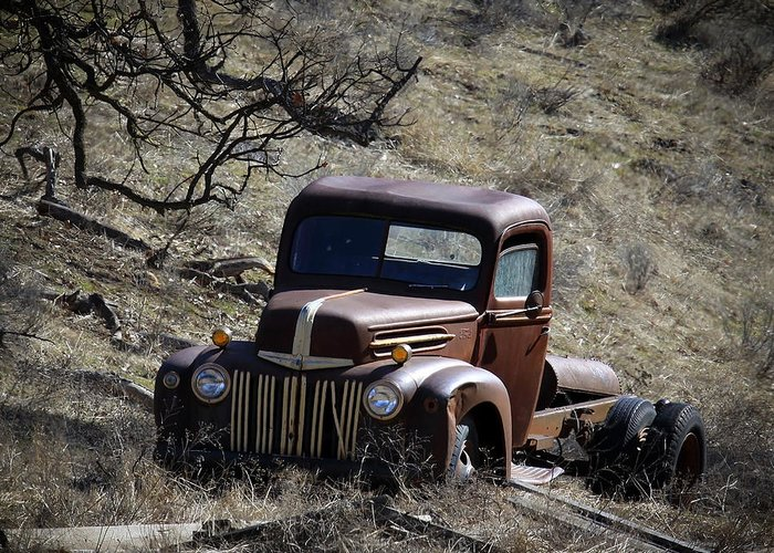 Ford Truck Greeting Card featuring the photograph Farm Fresh Ford by Steve McKinzie