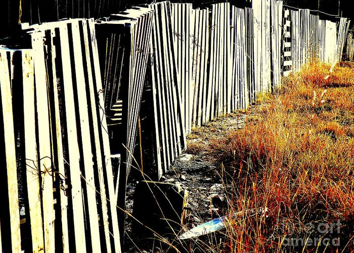 Fence Greeting Card featuring the photograph Fence Abstract by Joe Jake Pratt