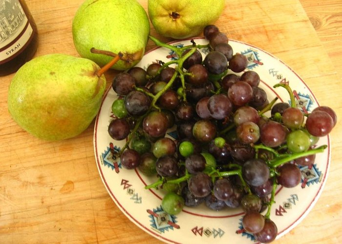 Grapes Greeting Card featuring the photograph First Harvest by Deb Martin-Webster