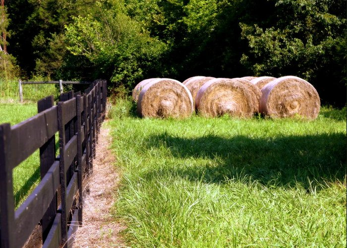 Hay Greeting Card featuring the photograph Four Corners by Karen Wiles