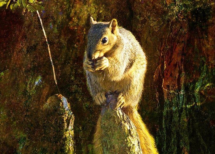 J Larry Walker Greeting Card featuring the digital art Fox Squirrel Sitting On Cypress Knee by J Larry Walker