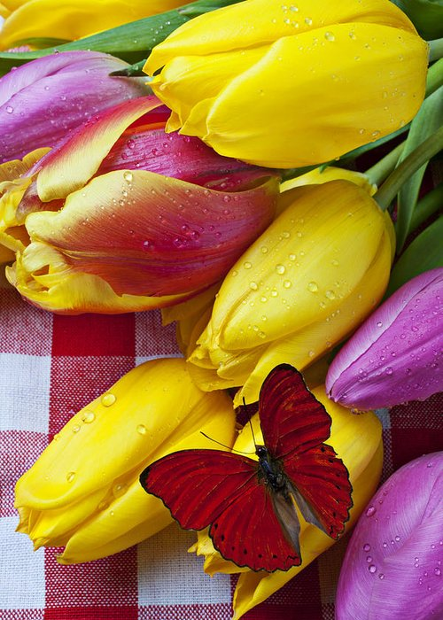 Red Greeting Card featuring the photograph Fresh Tulips And Red Butterfly by Garry Gay