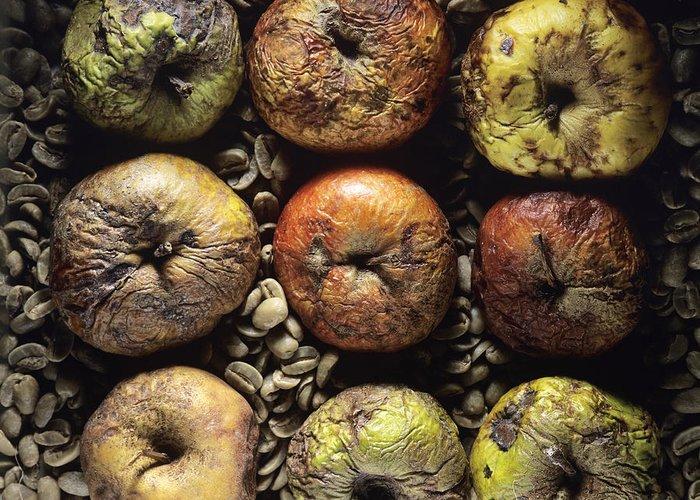 Vitamins Greeting Card featuring the photograph Frozen Apples by Bernard Jaubert