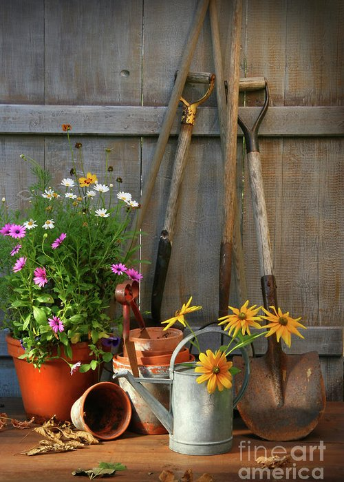Activity Greeting Card featuring the photograph Garden Shed With Tools And Pots by Sandra Cunningham