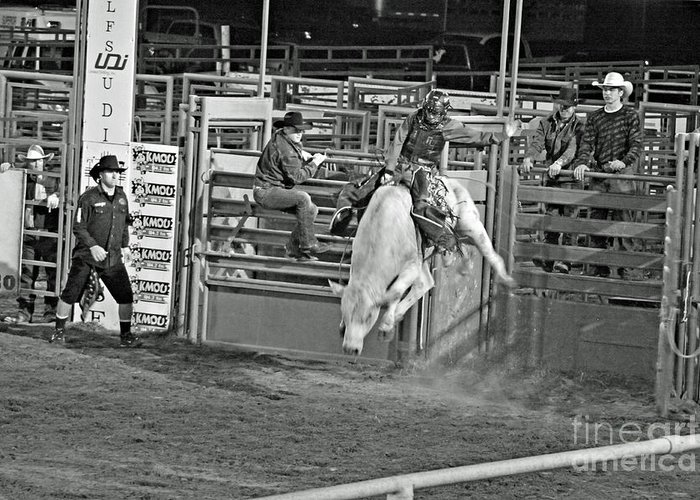 Bull Riding Greeting Card featuring the photograph Going For 8 by Shawn Naranjo