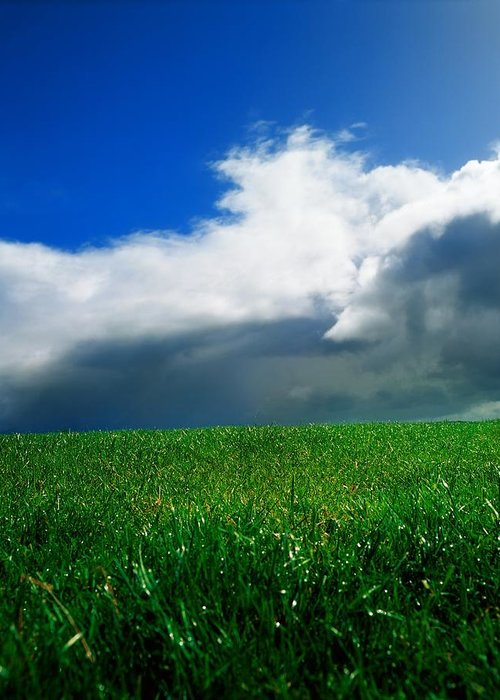 Blue Sky Greeting Card featuring the photograph Grassy Field, Ireland by The Irish Image Collection