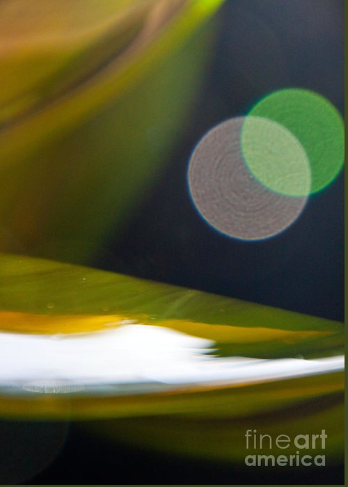 Abstract Greeting Card featuring the photograph Green And Gold Abstract by Dana Kern