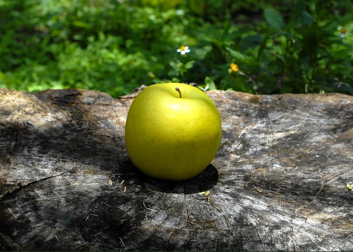Fine Art Photography Greeting Card featuring the photograph Green Apple by David Lee Thompson