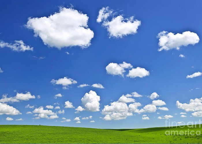 Field Greeting Card featuring the photograph Green Rolling Hills Under Blue Sky by Elena Elisseeva