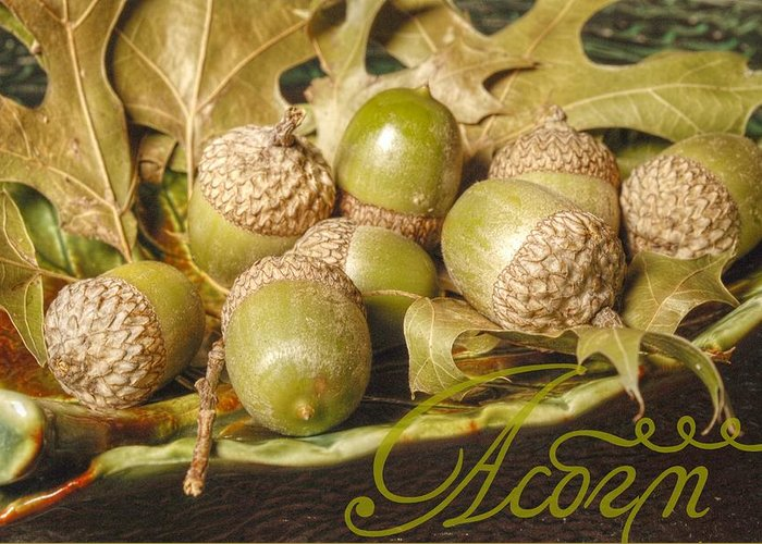 Word Greeting Card featuring the photograph Hdr Green Acorns In A Dish by Jennifer Holcombe