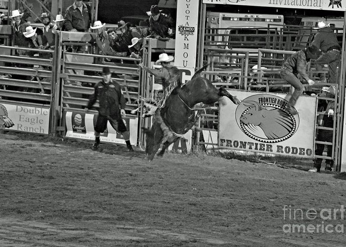 Bull Riding Greeting Card featuring the photograph Hold On For 8 by Shawn Naranjo