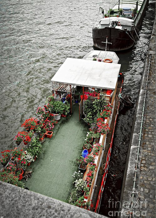 Boat Greeting Card featuring the photograph Houseboats In Paris by Elena Elisseeva