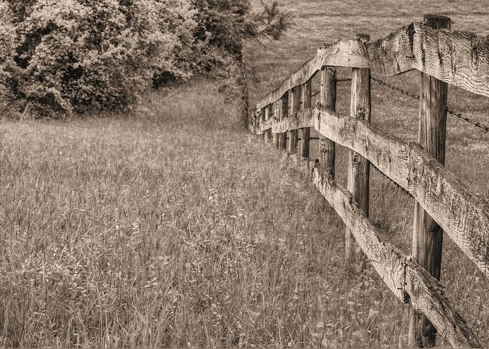 Into The Distance Greeting Card featuring the photograph Into The Distance Bw by JC Findley