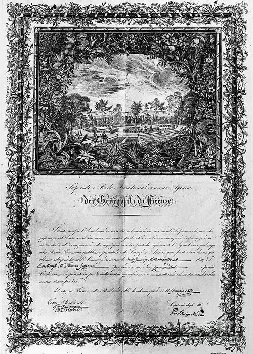 1820 Greeting Card featuring the photograph Jefferson: Degree, 1820 by Granger