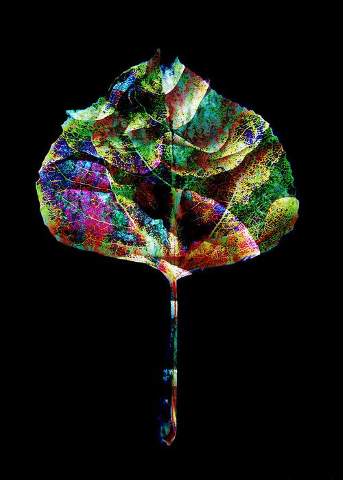 Leaf Greeting Card featuring the photograph Jewel Tone Leaf by Ann Powell