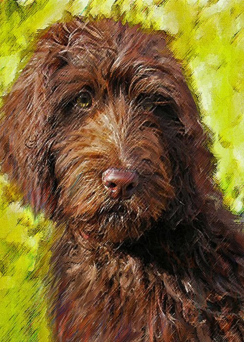 Labradoodle Greeting Card featuring the digital art Labradoodle by Jane Schnetlage