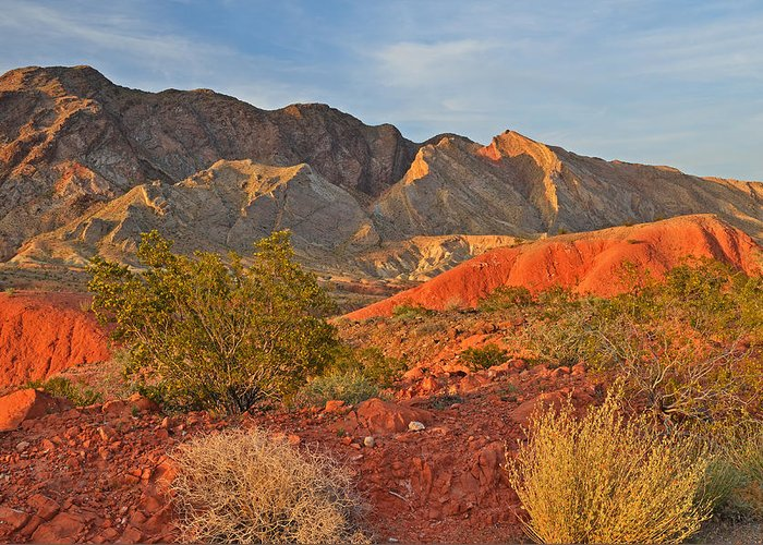 Area Greeting Card featuring the photograph Lake Mead Recreation Area by Dean Pennala
