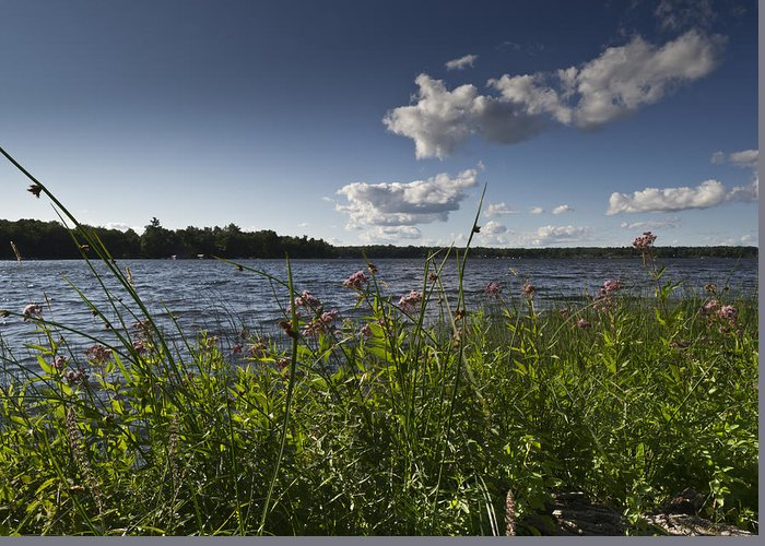 Camelot Greeting Card featuring the photograph Lake View by Gary Eason