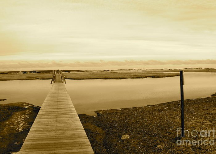 Boardwalk Greeting Card featuring the photograph Lets Take A Walk by Eric Chapman
