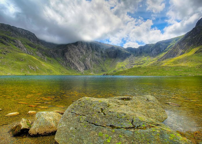 Plants Greeting Card featuring the photograph Llyn Idwal by Adrian Evans