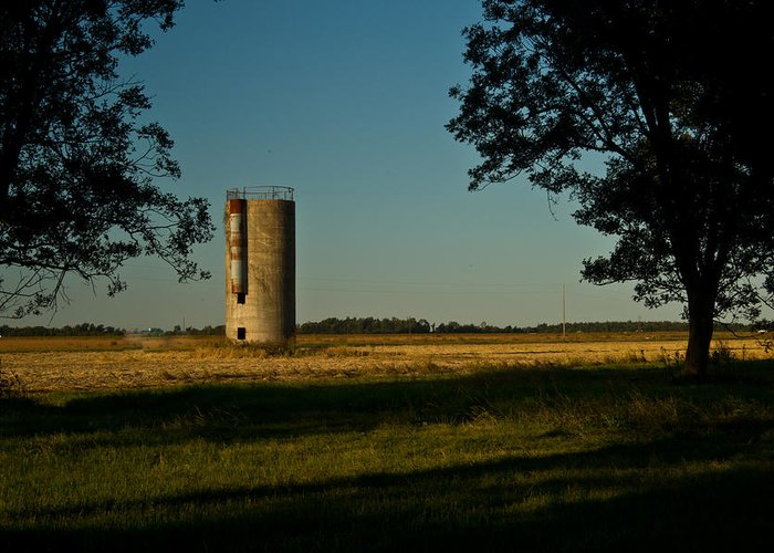 Silo Greeting Card featuring the photograph Lonly Silo 5 by Douglas Barnett
