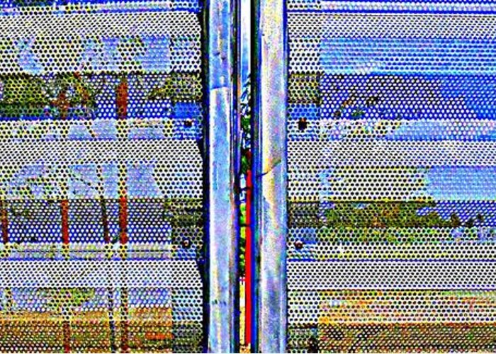 Gate Greeting Card featuring the photograph Looking Through The Gate by Randall Weidner