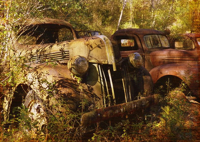 Truck Greeting Card featuring the photograph Lost In Time by Carla Parris