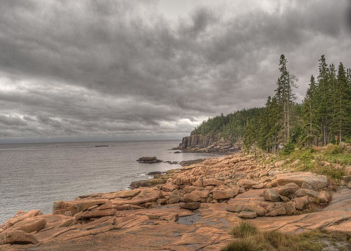 Landscape Greeting Card featuring the photograph Maine Coastline. Acadia National Park by Juli Scalzi