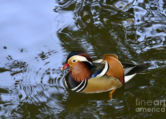 Mandarin Duck Greeting Card featuring the photograph Mandarin Duck 04 by Arik Baltinester