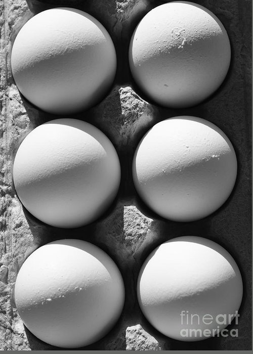 Eggs Greeting Card featuring the photograph Many Moons by Luke Moore