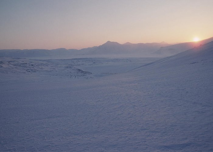 Spitsbergen Greeting Card featuring the photograph Midnight Sun Hovers Above Polar by Gordon Wiltsie