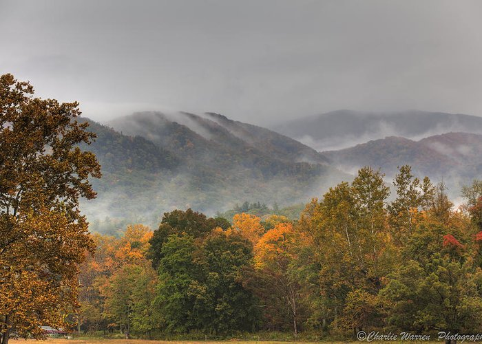 Mountains Greeting Card featuring the photograph Misty Morning Iv by Charles Warren