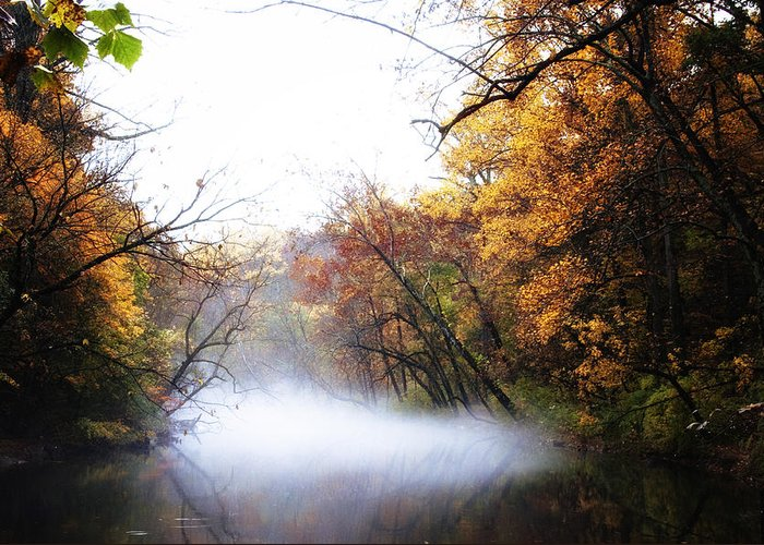 Misty Wissahickon Greeting Card featuring the photograph Misty Wissahickon by Bill Cannon