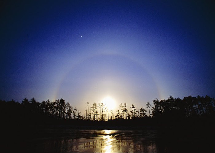 Moon Dog Greeting Card featuring the photograph Moon Dog by David Nunuk