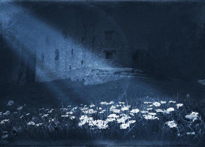 Art Greeting Card featuring the digital art Moon Light Daisies by Svetlana Sewell