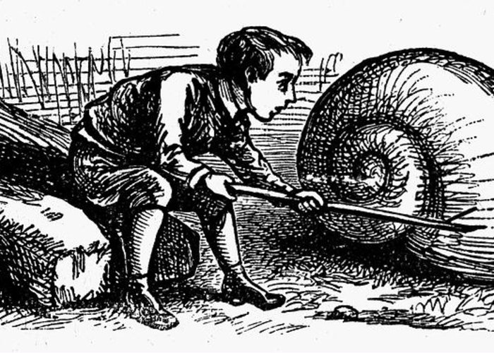 19th Century Greeting Card featuring the photograph Mother Goose: Snail by Granger