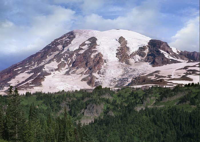 00177105 Greeting Card featuring the photograph Mount Rainier With Coniferous Forest by Tim Fitzharris