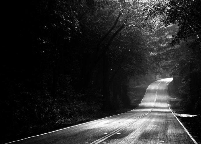 Forest Greeting Card featuring the photograph Mountain Road II by Matt Hanson