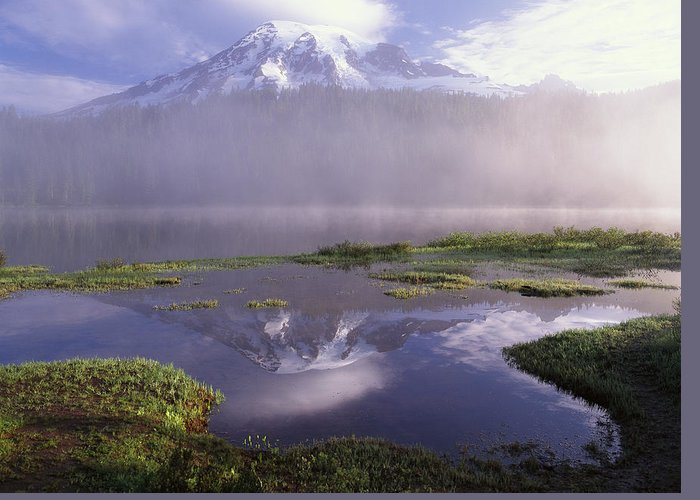00173629 Greeting Card featuring the photograph Mt Rainier An Active Volcano Encased by Tim Fitzharris