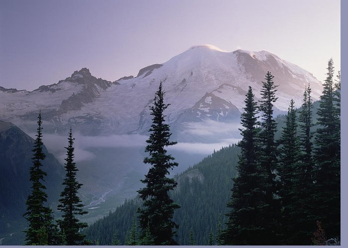 00174583 Greeting Card featuring the photograph Mt Rainier As Seen At Sunrise Mt by Tim Fitzharris