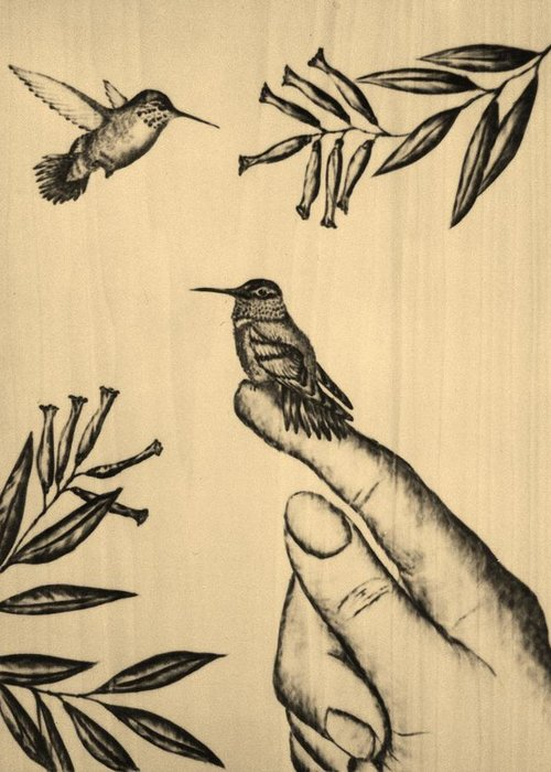 Hummingbird Greeting Card featuring the pyrography My Babies by Susan Rice
