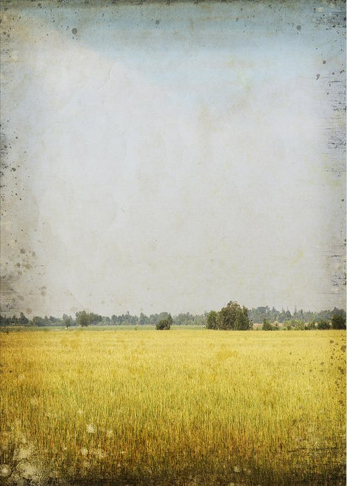 Abstract Greeting Card featuring the photograph Nature Painting On Old Grunge Paper by Setsiri Silapasuwanchai