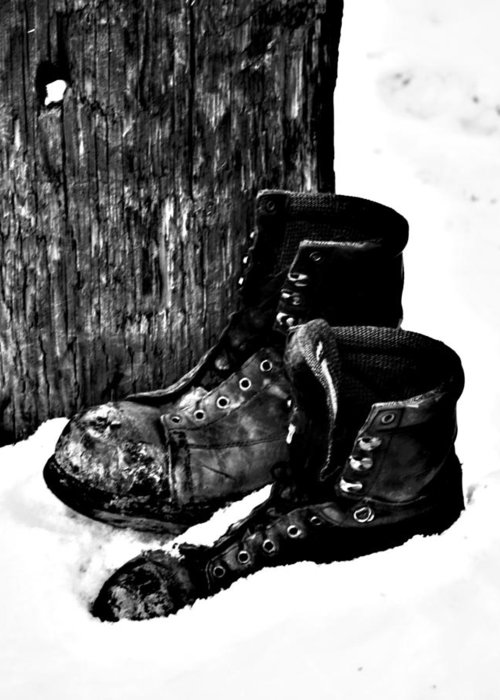 Elm Greeting Card featuring the photograph New Shoe Drop Off by JC Photography and Art