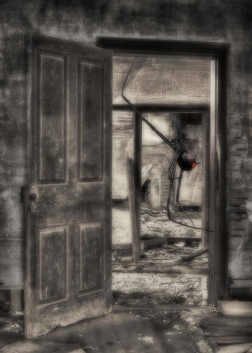 Nightmares Greeting Card featuring the photograph Nightmares by JC Findley