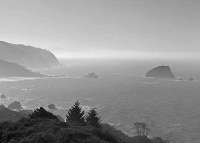 California Greeting Card featuring the photograph North California Coast In Black And White by Twenty Two North Photography