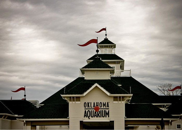 Oklahoma Aquarium Greeting Card featuring the photograph Oklahoma Aquarium by Toni Hopper