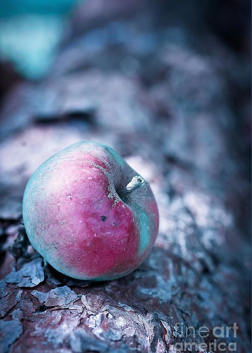 Apple Greeting Card featuring the photograph One Appel A Day by VIAINA Visual Artist